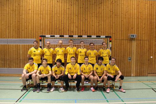 Die Herrenmannschaft 2015/2016 von Trainer Christian Missy.