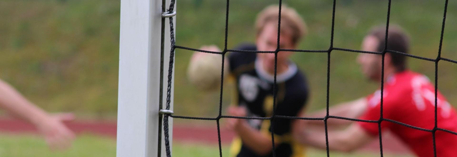 Handball-Füchse ST Scheyern