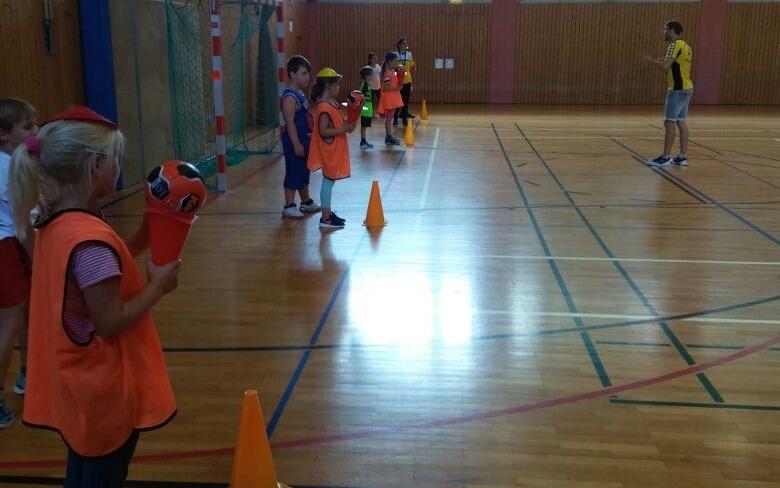 Kinder- und Jugendhandball bei den Scheyerer Füchsen